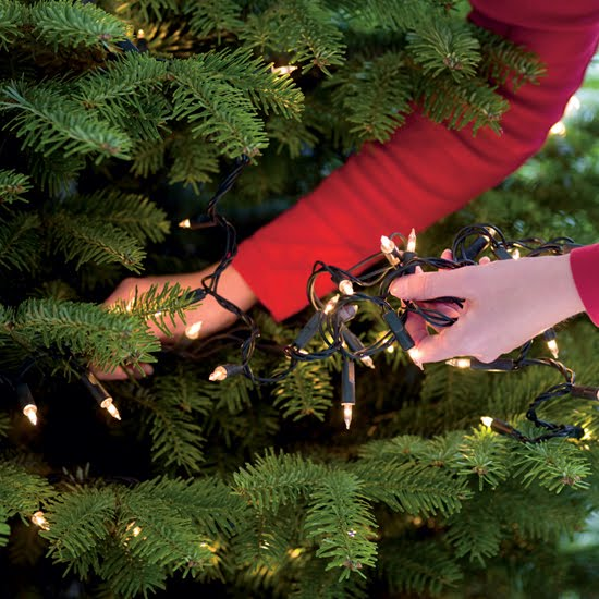 make sure you dont cover the lights in tinsel or any flammable decorations did you know 14 people a year die in christmas tree fires - Best Way To String Lights On A Christmas Tree